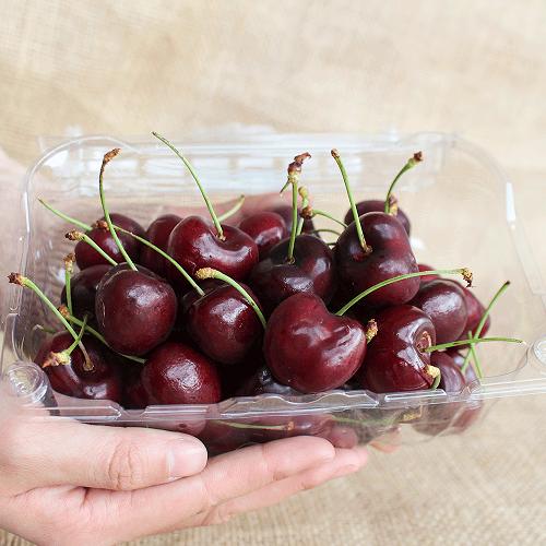 Cách bảo quản cherry đỏ tươi lâu