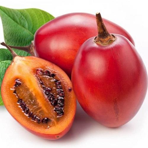 Ưu điểm của cà chua thân gỗ