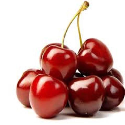 Cây Cherry đỏ - Cung cấp giống cây Cherry đỏ chất lượng cao